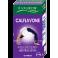 Biogrow Calflavone (60 Capsules)