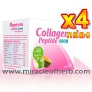 Vistra Collagen Peptide 4000 Apple Melon Flavour (4 boxes - 10 sachets/box)